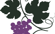 Viral Vines Logo-thumb